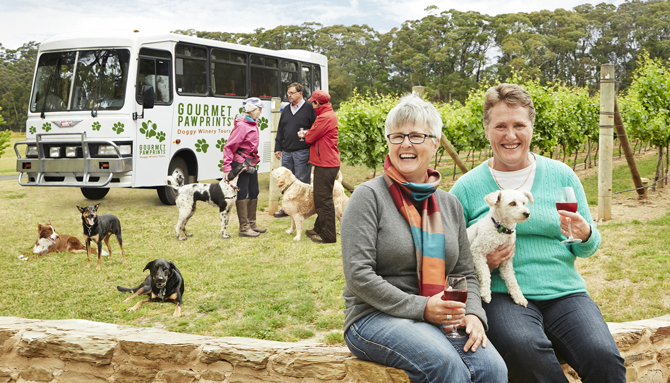 Gourmet-Pawprints-dog-friendly-tours-Victoria-with-Bella-the-bus