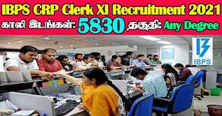 IBPS CRP Clerk XI Recruitment 2021 5830 Vacancies