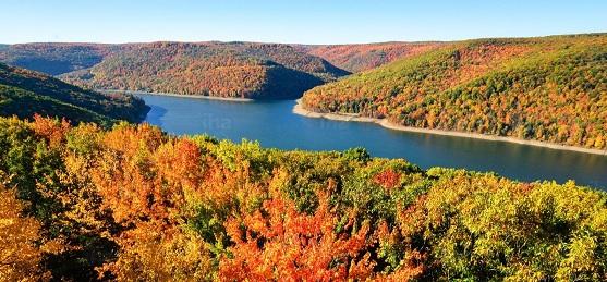 A Pennsylvania -i vadon