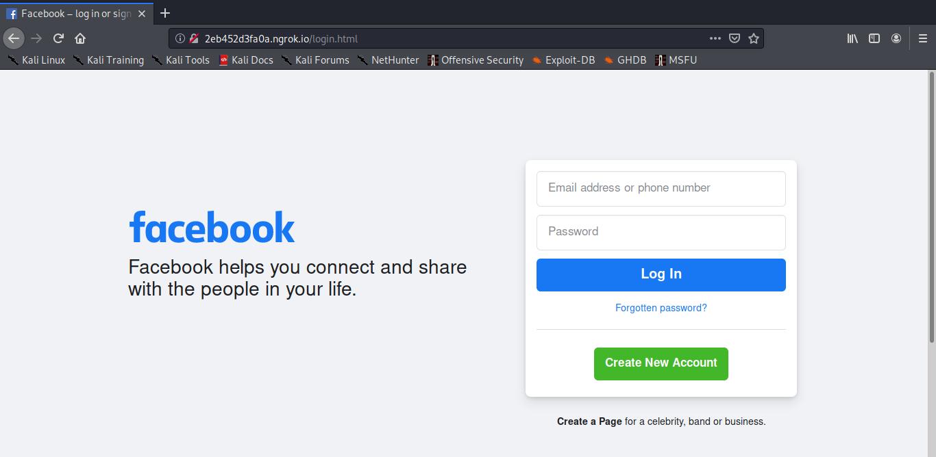 phishing page hosting