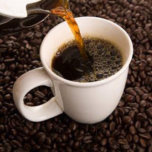 kopi luwak lampung,kopi luwak bali,kopi luwak jakarta,kopi luwak cafe,kopi luwak nusantara,