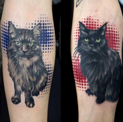 Estas incríveis gatos pretos