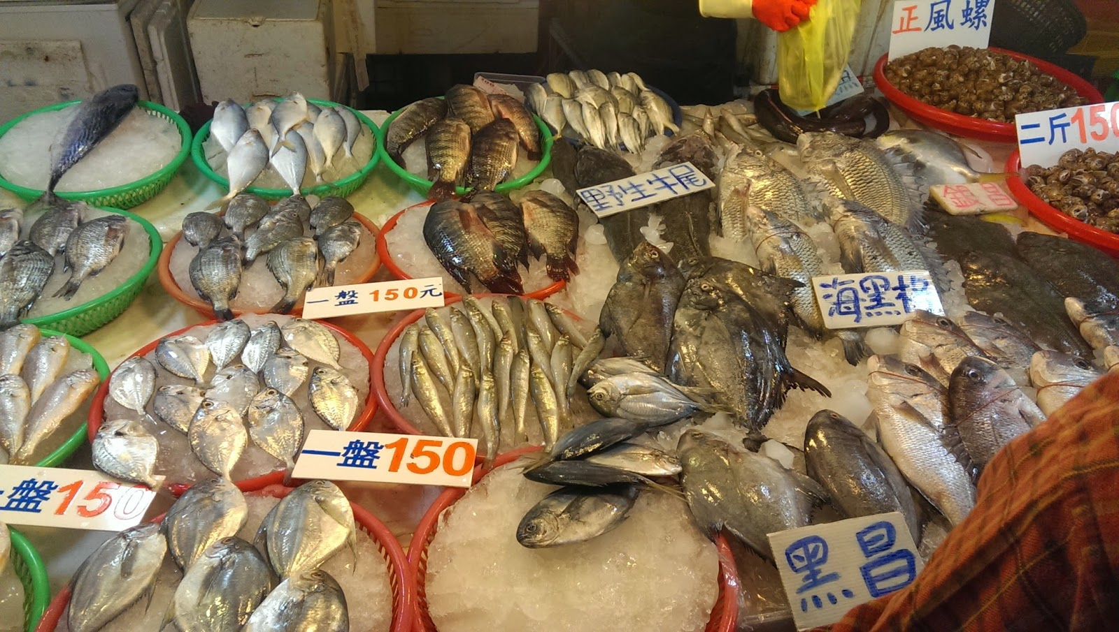 2015 02 02%2B12.59.13 - [食記] 葉家生魚片 - 布袋觀光漁市中的鮮魚餐廳