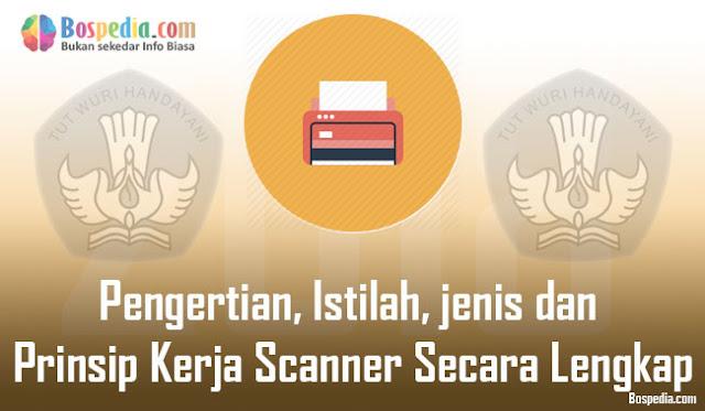 Pengertian, Istilah, jenis dan Prinsip Kerja Scanner Secara Lengkap