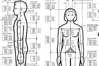 calculadora corporal