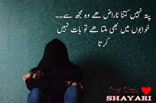 urdu shayari two line