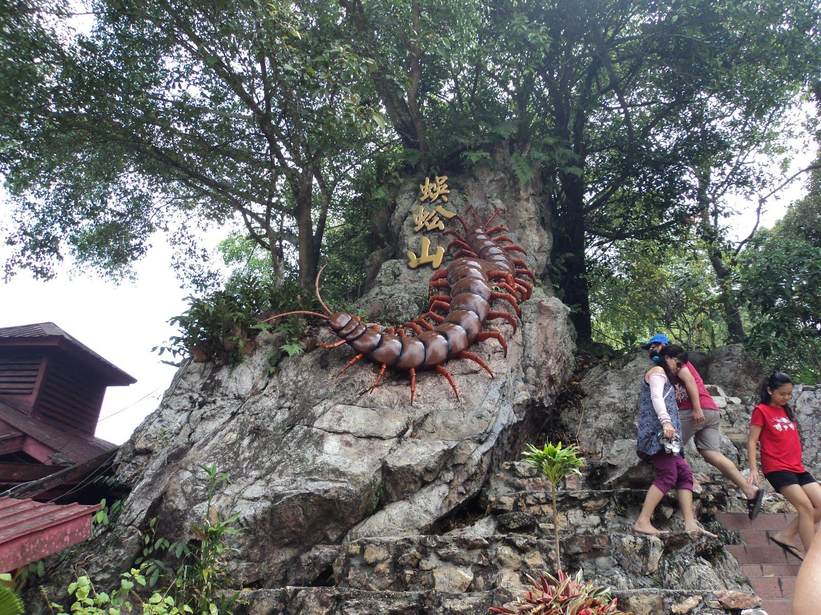 largest prehistoric millipede - digitalspace info