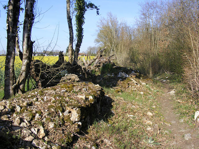 An old stone wall.  Indre et Loire, France. Photographed by Susan Walter. Tour the Loire Valley with a classic car and a private guide.