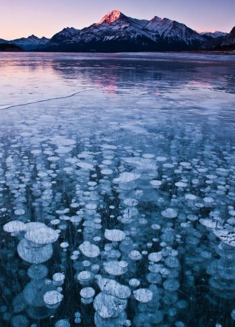Lo Más Bellezas Transitorias, Burbujas Congeladas en el Lago Abraham, Alberta, Canada 1