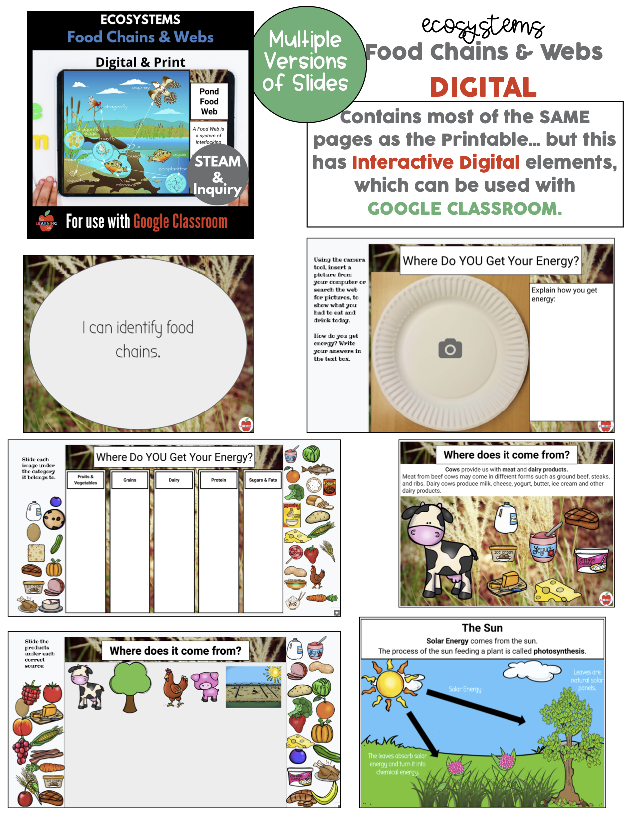 Ecosystem Bundle For Distance Learning Classroom