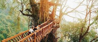 Tempat Wisata di Bogor Terbaru yang Kekinian
