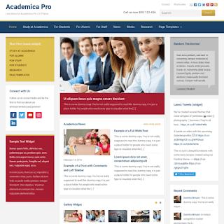 Packed WPZoom Theme WordPress