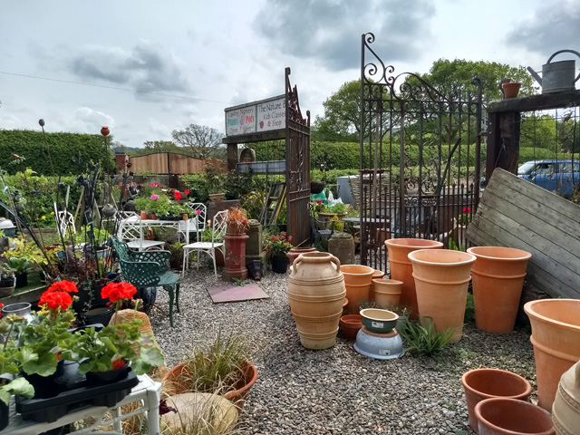 Leebotwood Shropshire plants