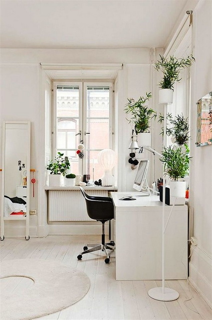 How To Using Plants Decorating Ideas For Interiors 7