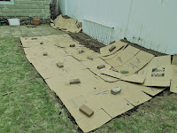 The garden is covered with cardboard, each box is flattened and has a brick on it.