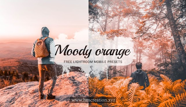Moody orange lightroom mobile presets free download
