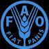 FAO anuncia incremento en los precios de los alimentos a nivel mundial
