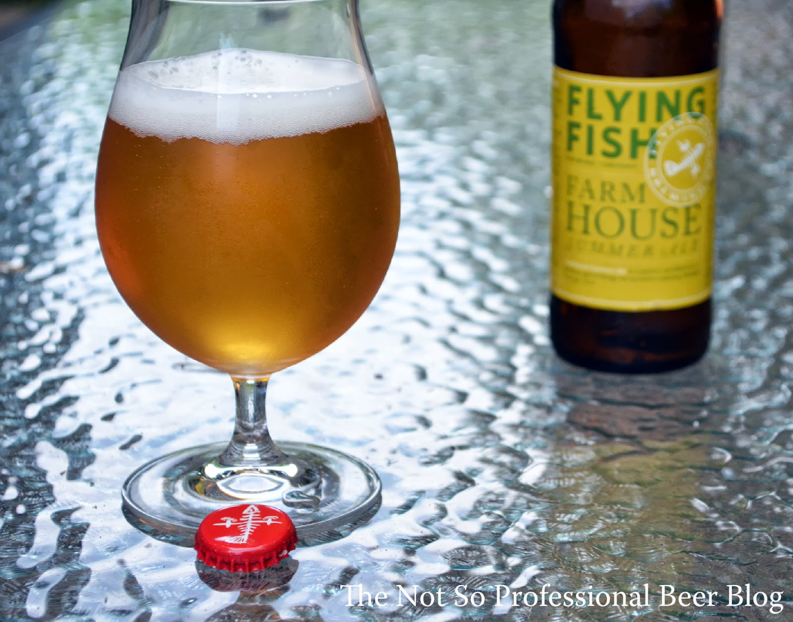 Flying Fish Farmhouse Summer Ale The Not So Professional Beer Blog Review Farmhouse