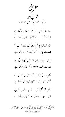 Zara sa rukh pe jo - Ghazal by Shakeeb Ahmad