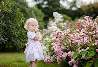 Types of flowers suitable for babies