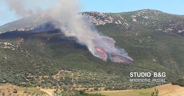 Τριάντα έξι πυρκαγιές σε όλη την Ελλάδα το τελευταίο 24ωρο