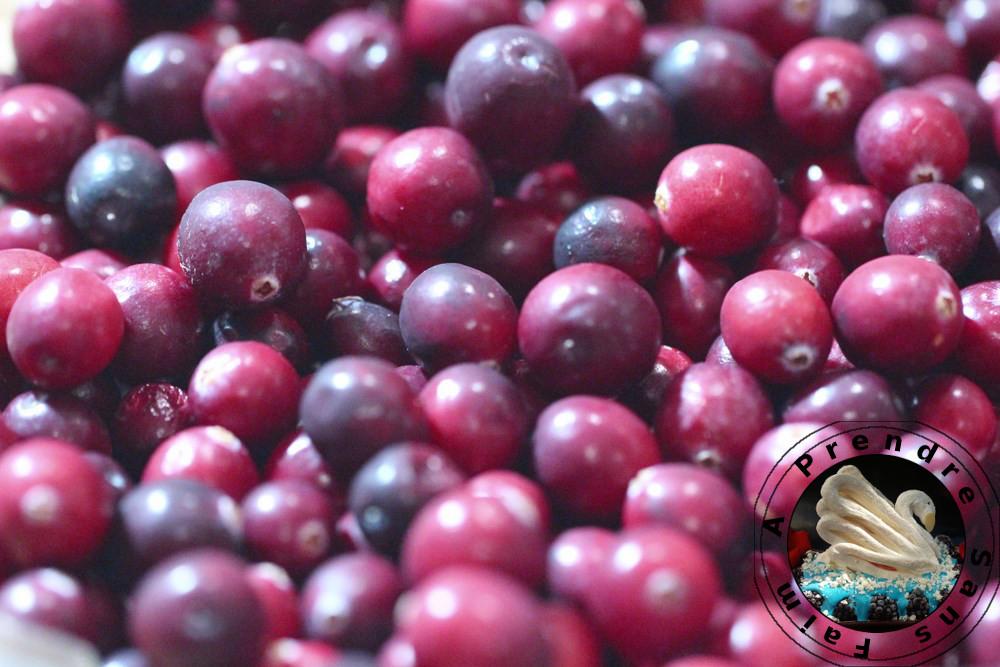 Cuisses de poulet sauce aux cranberries