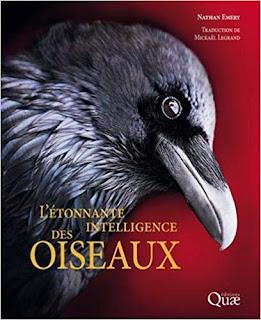 L'étonnante intelligence des oiseaux - Legrand, Emery - Quae - plumages.fr