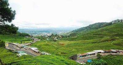 wisata terbaru bogor Taman Riung Gunung