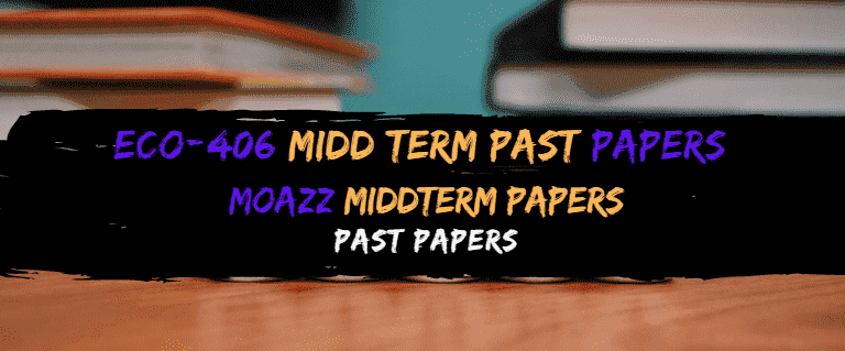 ECO406 Moazz Midterm Solved Papers