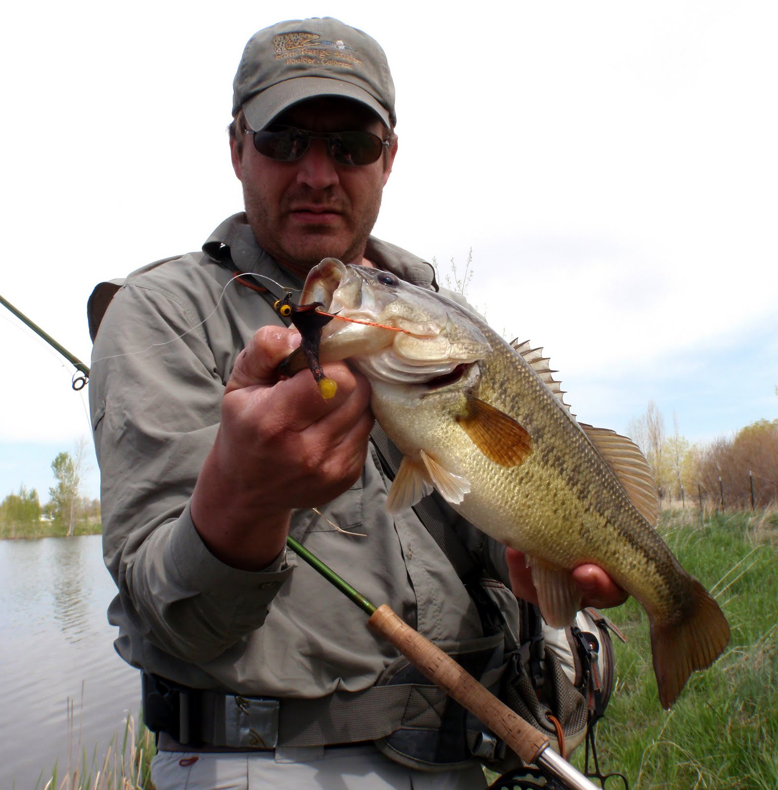 Colorado Fly Fishing Reports: Fly Fishing For Bass (Directory)