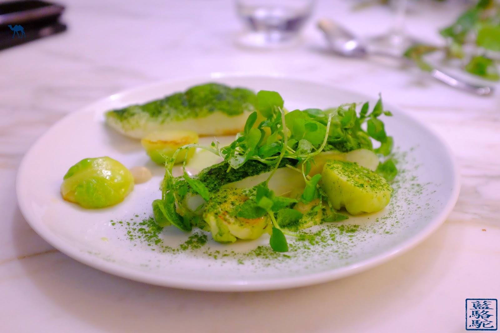 Le Chameau Bleu - Blog Gastronomie Restaurant Noglu Marais Paris - Turbot Chou Iodé Anchois