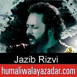 https://www.humaliwalayazadar.com/2019/10/jazib-rizvi-nohay-2020.html