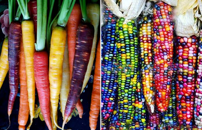 Beautiful Multi-colored fruits and vegetables that few people know about.