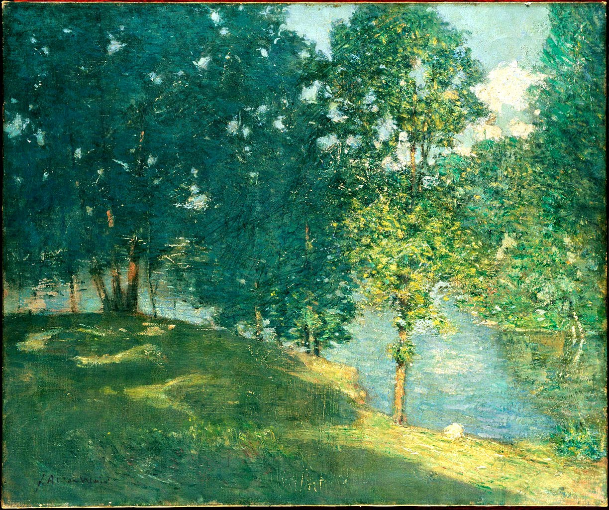 Summer pond behind the trees