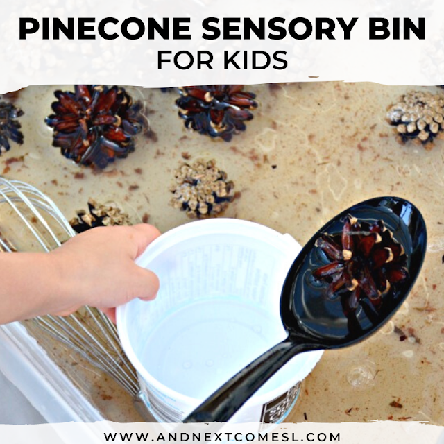 Preschool pinecone activities
