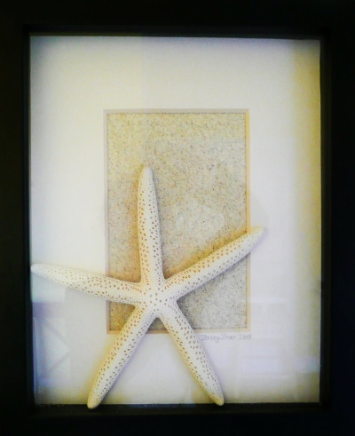 Shadow Box Frame Beach Sand Starfish Idea