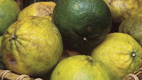 fruit around the world, strange fruit, strange fruit around the world, crazy fruit, crazy fruit around the world, UGLI FRUIT