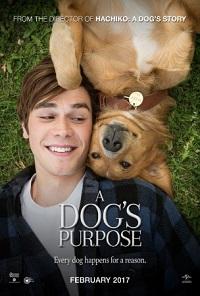 Review Film A DOG'S PURPOSE Bioskop