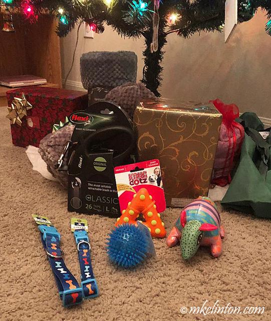 dog toys under Christmas tree