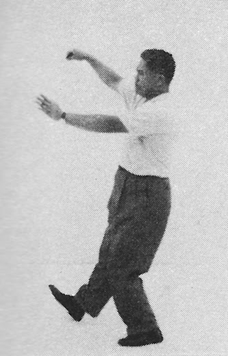 Tai Chi Chuan (Square Form) 68. The Seven Stars Style
