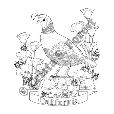 http://www.zazzle.com/forestwildlifeart/gifts?cg=196059866820635674