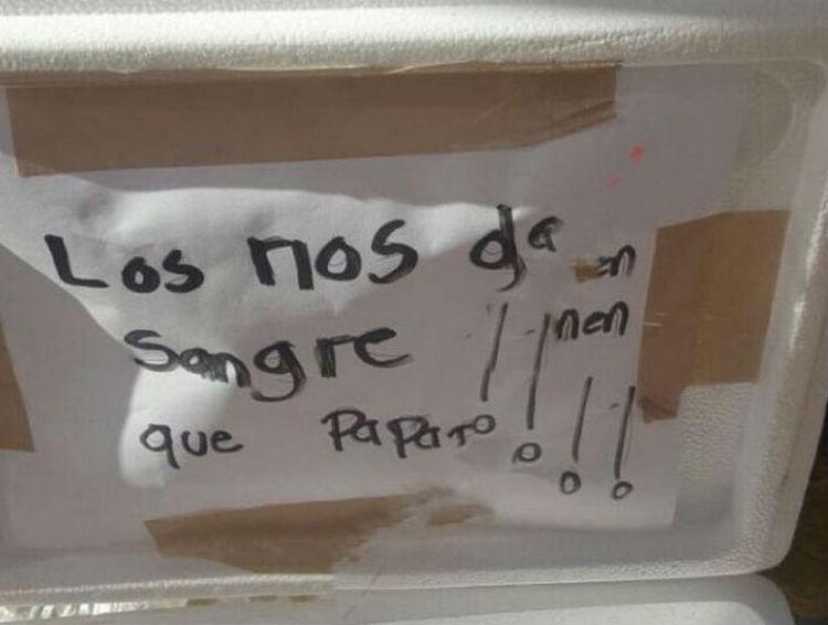 Hallan hielera con una cabeza de cerdo y dos mensajes en calles de Guadalajara