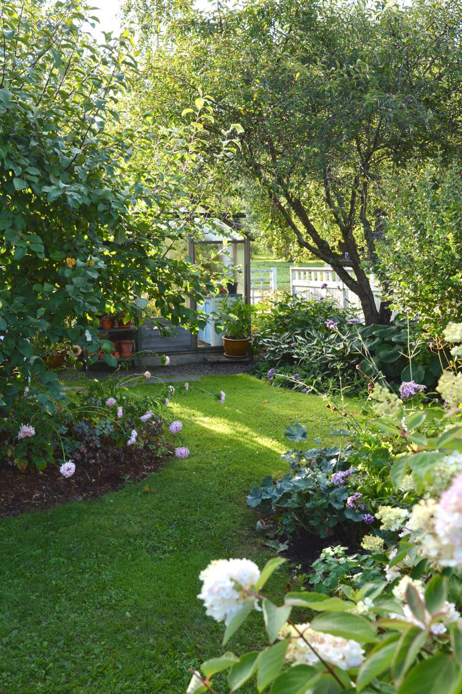 puutarha-kasvihuone-alkusyksy