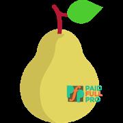 Pear Launcher Pro APK