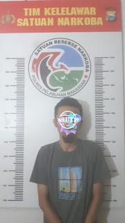 Lagi ! Satnarkoba Polres Pelabuhan Makassar Amankan Pelaku Narkoba jenis Ganja
