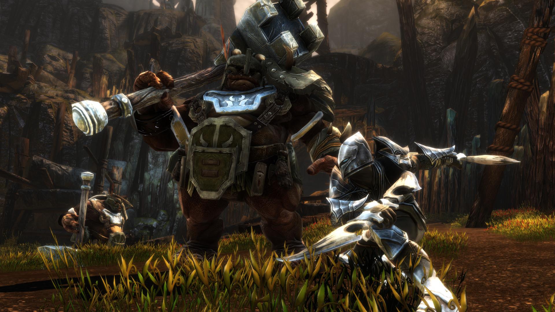 kingdom-of-amalur-re-reckoning-pc-screenshot-01