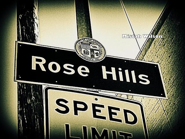 Rose Hills, Los Angeles, California by Mistah Wilson