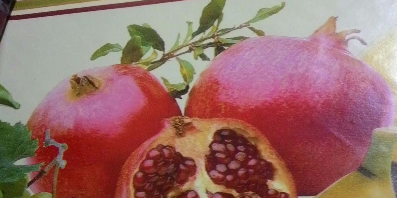 Felce iyi Gelen Bitkiler Meyveler Yiyecekler