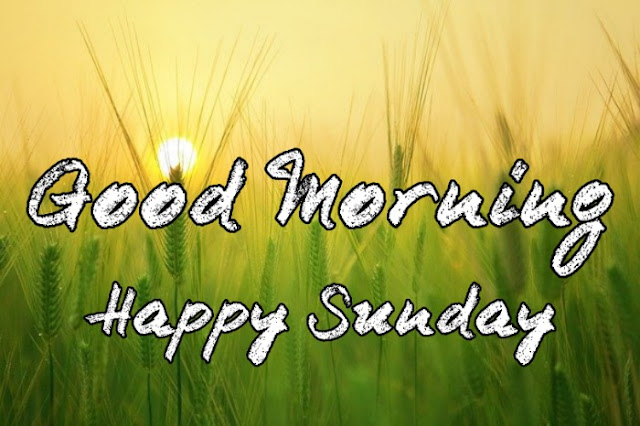 good morning sunday images for whatsapp