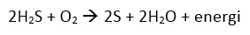hidrogen sulfida diubah menjadi belerang